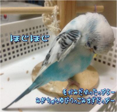 20121215-01.jpg