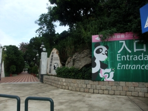 マカオ24パンダ公園