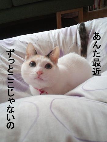 CA3J04190001.jpg