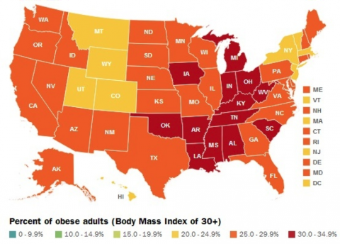 2012 Obesity