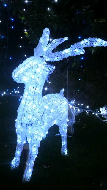 クリスマス系 2