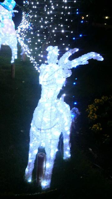 クリスマス系 6