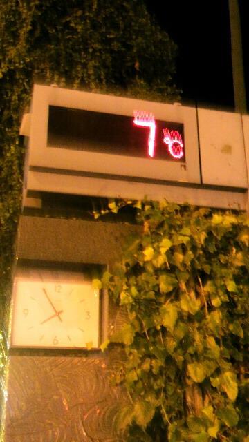 12月4日 気温