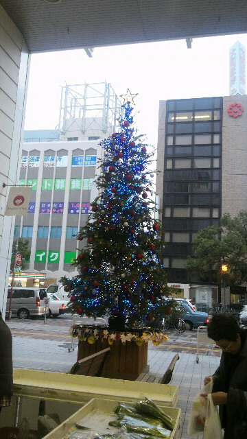 クリスマス系 7