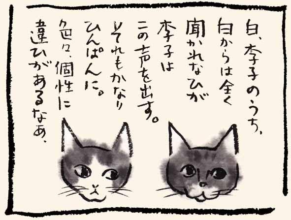 8-白と李子