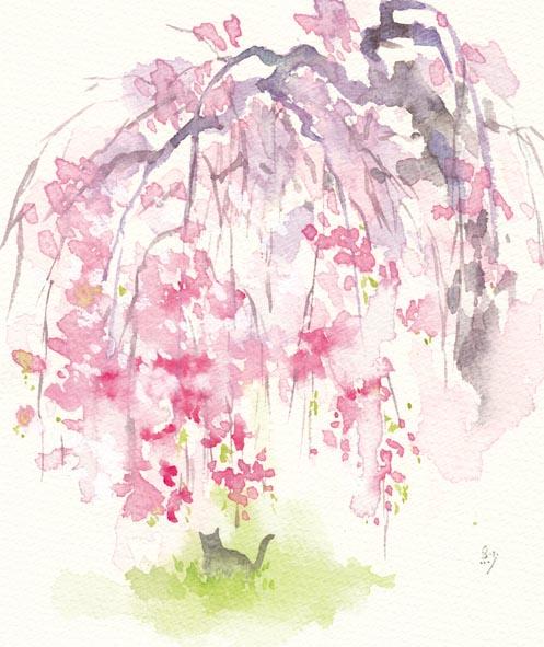 枝垂れ桜に猫