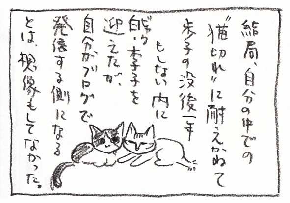 12-猫切れ