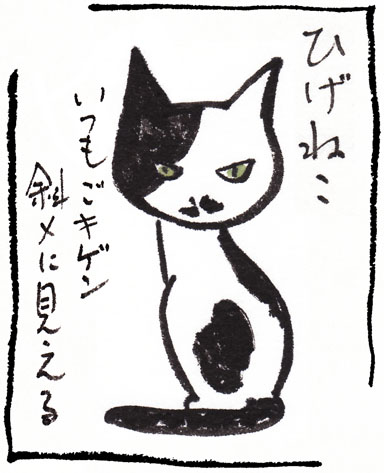 3_ひげねこ