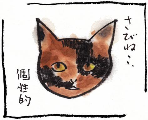 9_さびねこ