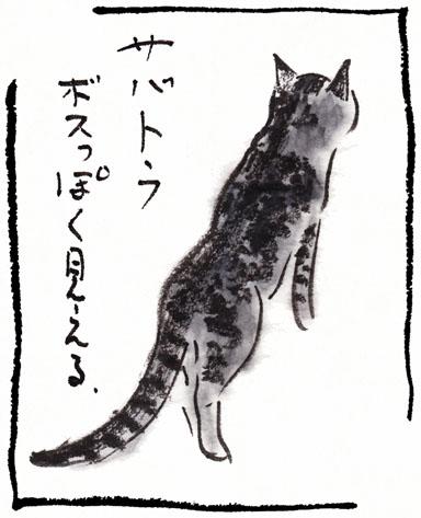15_鯖トラ