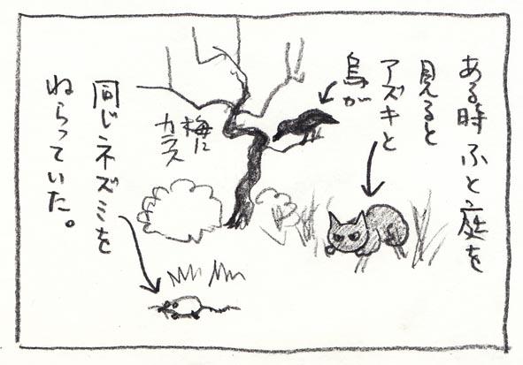 4_小豆とカラス