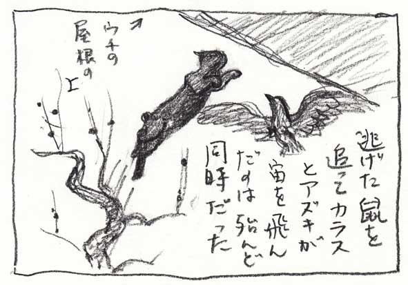 6_あずき跳ぶ