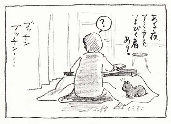 3_ブッチン