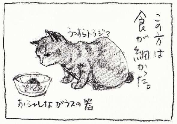 5_食細い