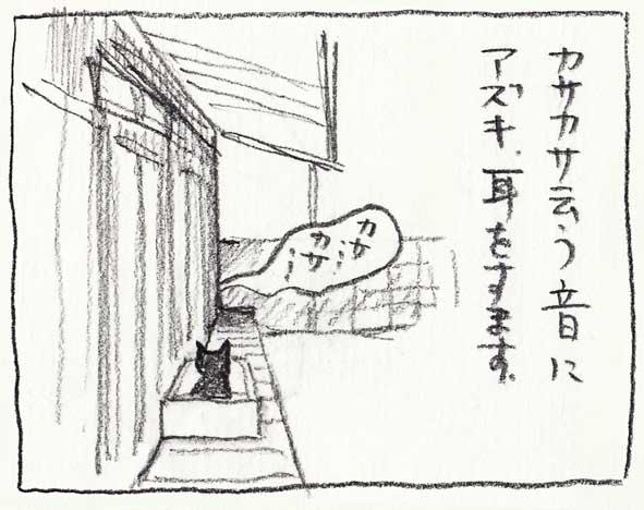 14_カサカサ
