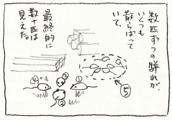 7_最終的