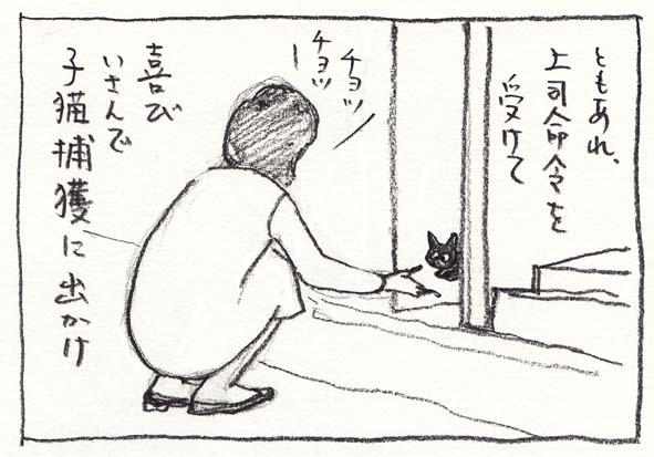 10_捕獲