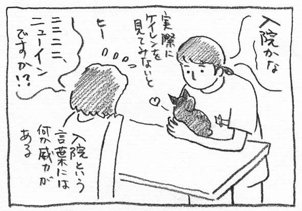 3_入院かな
