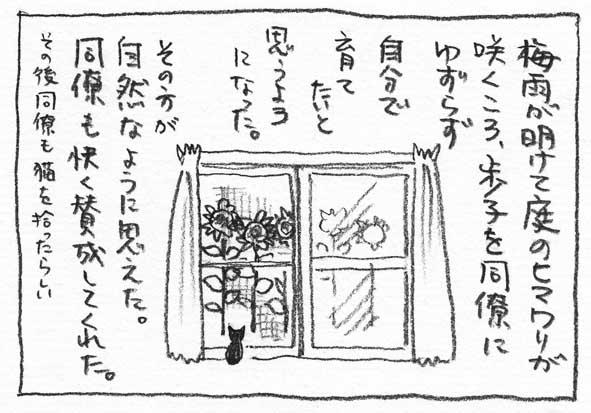 10_ヒマワリ