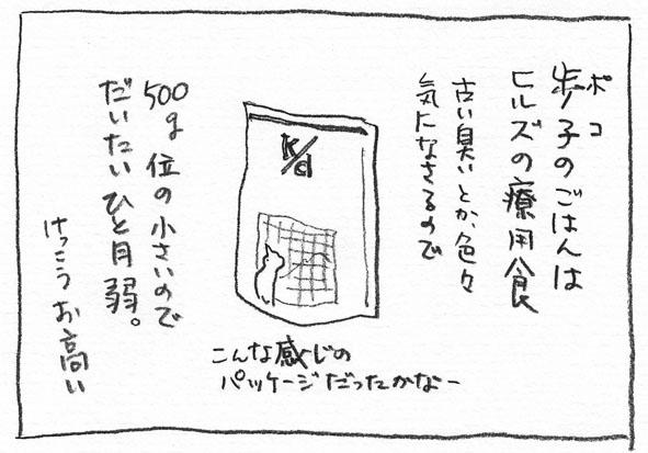 1_ヒルズ