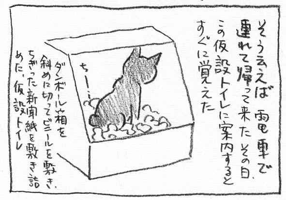 4_仮説トイレ