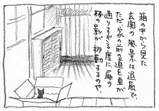 6_桟の影