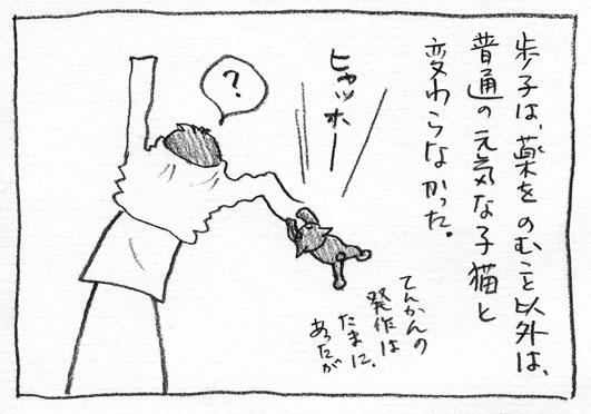 2_ヒャッホー