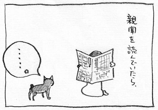 12_新聞を