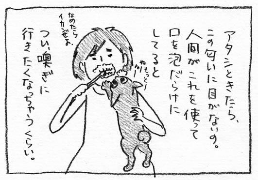 5_いかんぜよ
