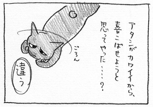 3_カワイイから