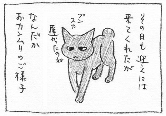 3_オカンムリ