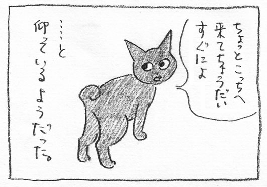 4_こっちへ