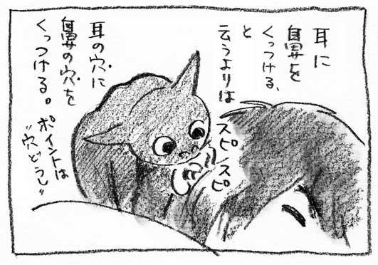 4_穴どうし