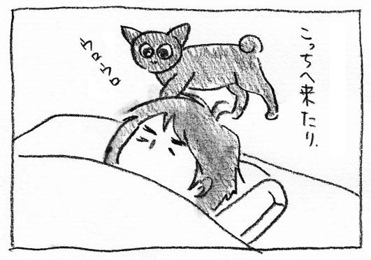 12_ウロウロ