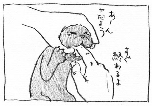 7_やだよー