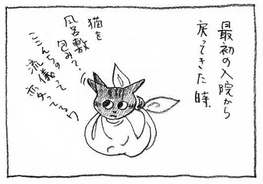 1_風呂敷包み