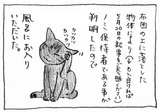 2_ノミ保持者