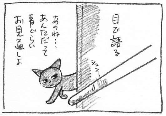 10_お見通し
