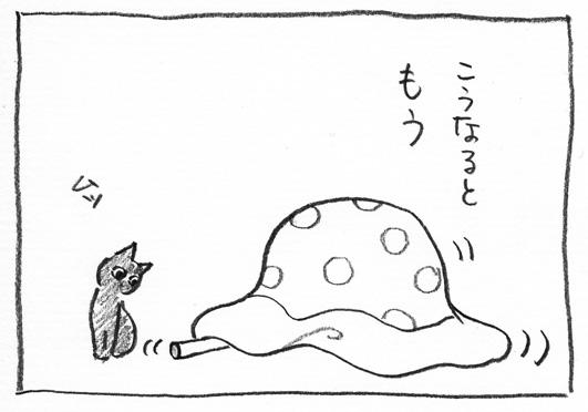 11_布団かぶり
