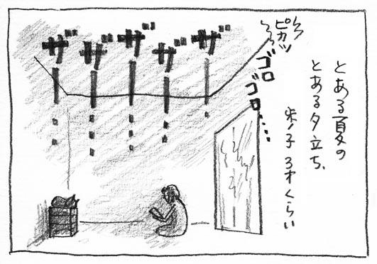 8_ザーザー