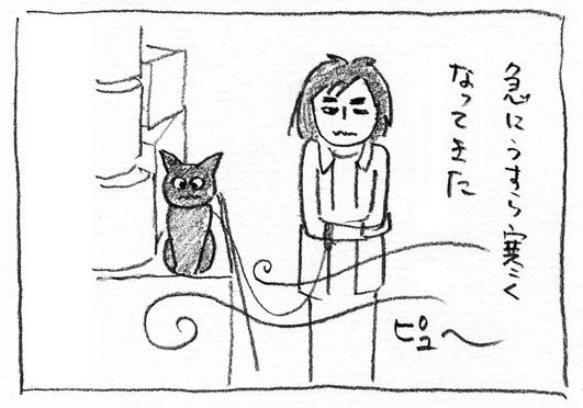 5_ピュー