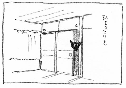 5_ひょっこり