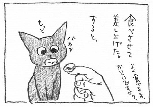 5_もっと
