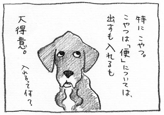 2_こやつ