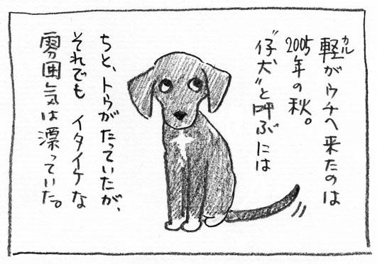 4_イタイケ