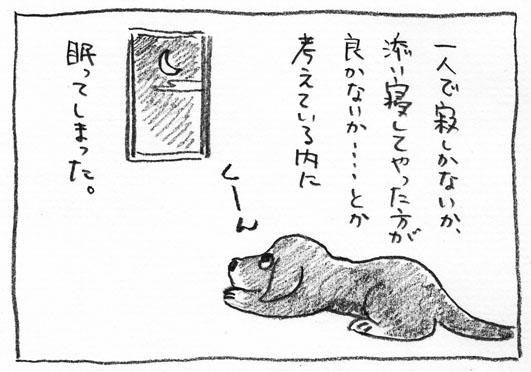 6_くーん