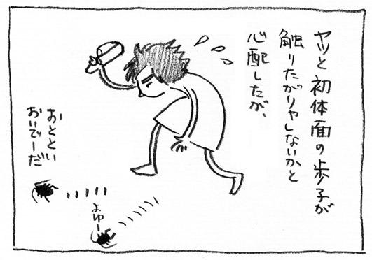 6_よゆー
