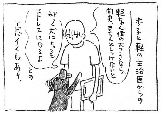 5_しつけ