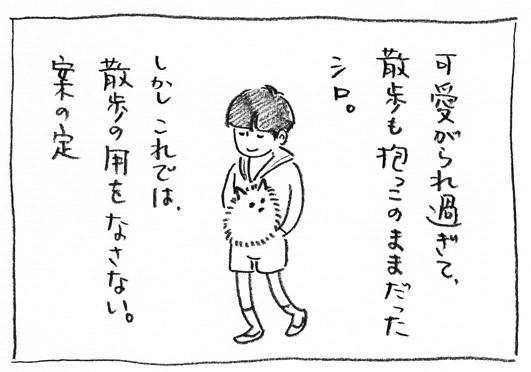 2_散歩の用