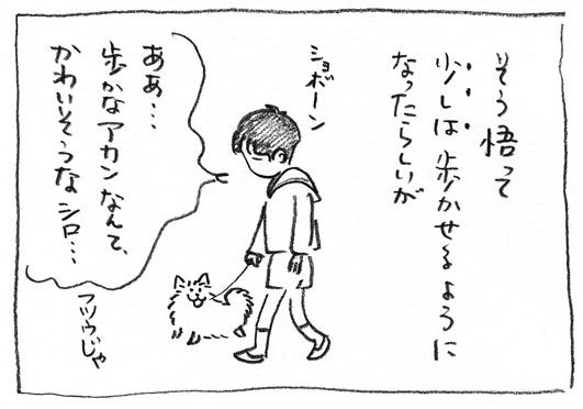 6_ショボーン